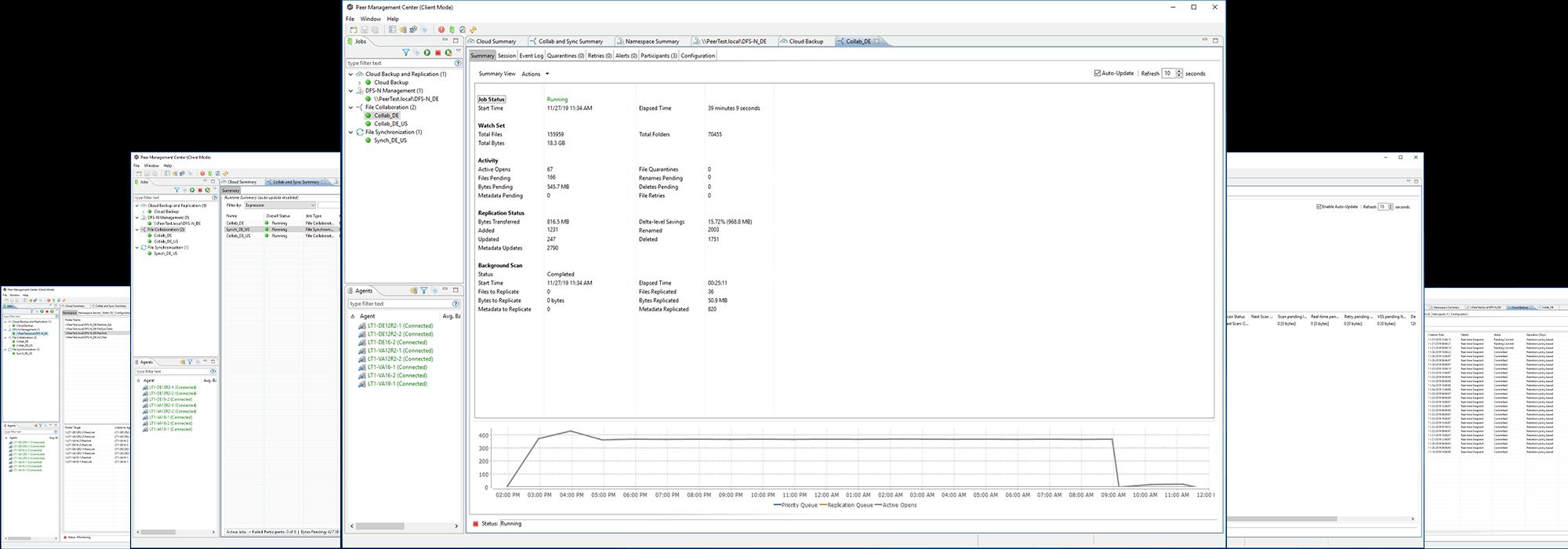 PeerGFS Screenshot Console