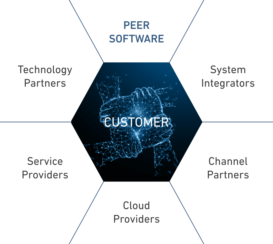 Peer Software Partner Structure Graphic