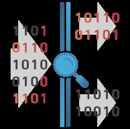 Data Reorganization Scan Magnifier