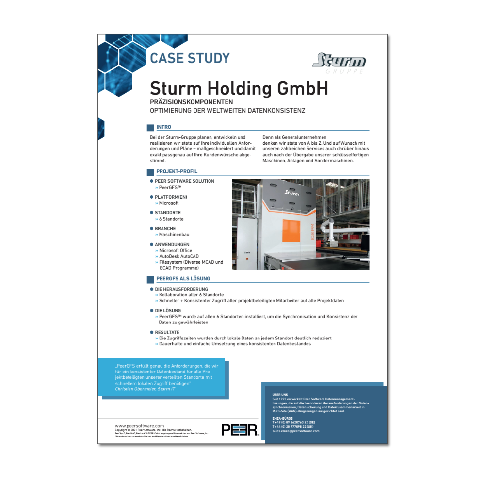 Sturm Holding Case Study Preview